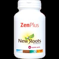 Zen Plus