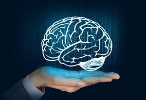 New Roots Herbal - brain health
